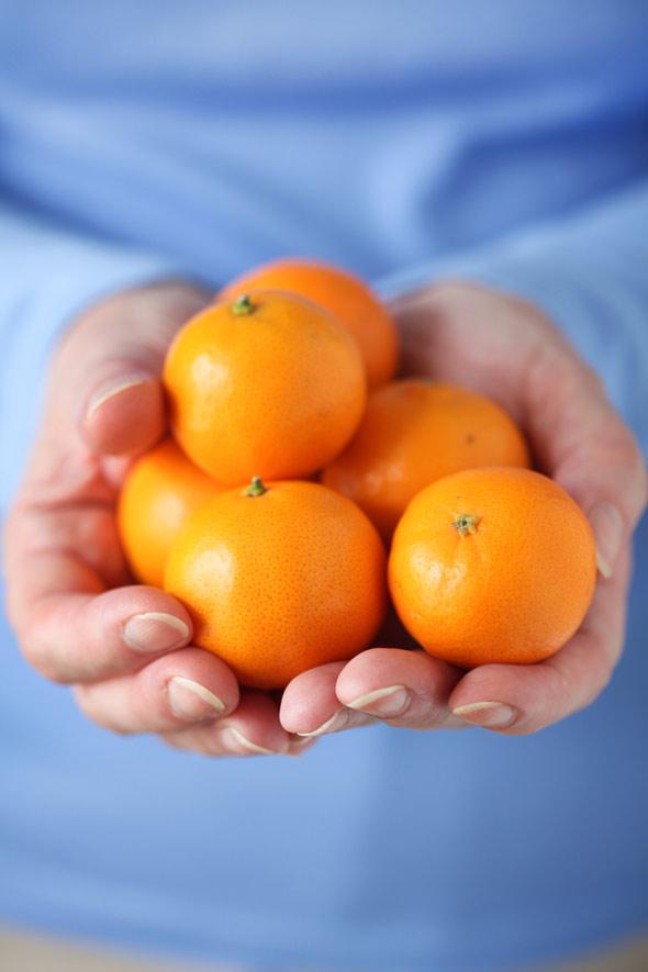 Pixie Tangerine and Fennel Pots de Creme :: Cannelle et ...