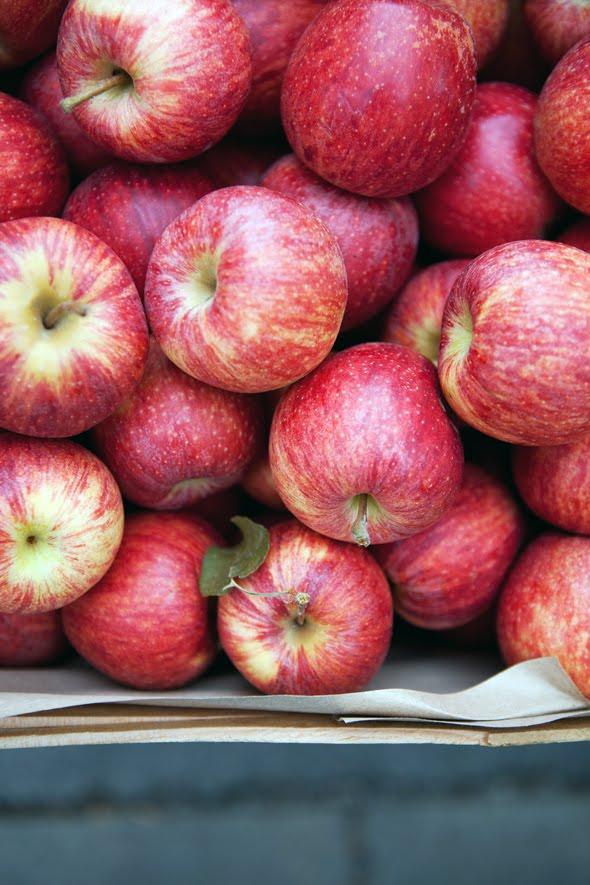 EDOC3249 - Apple, oat and herb scones