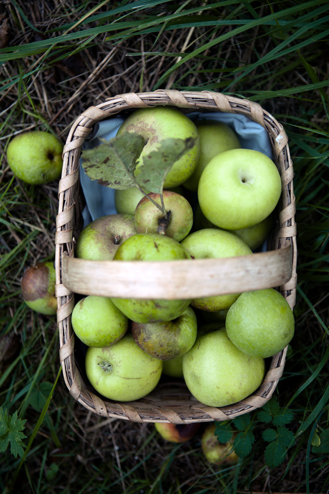 Pink pearl apple pie | Cannelle et Vanille