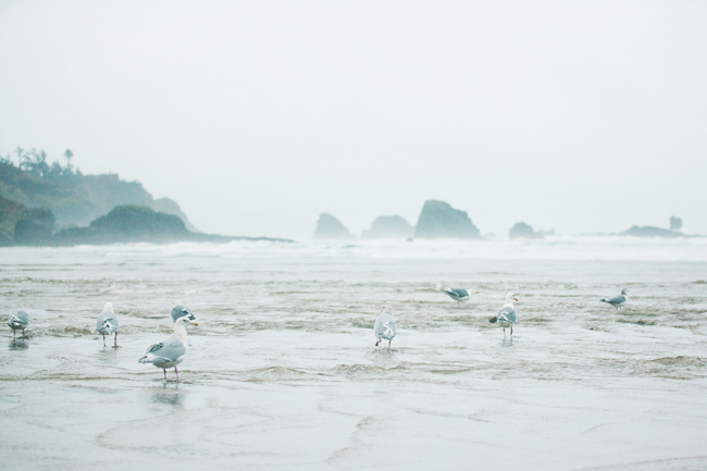 Indian Beach, Oregon | Cannelle et Vanille