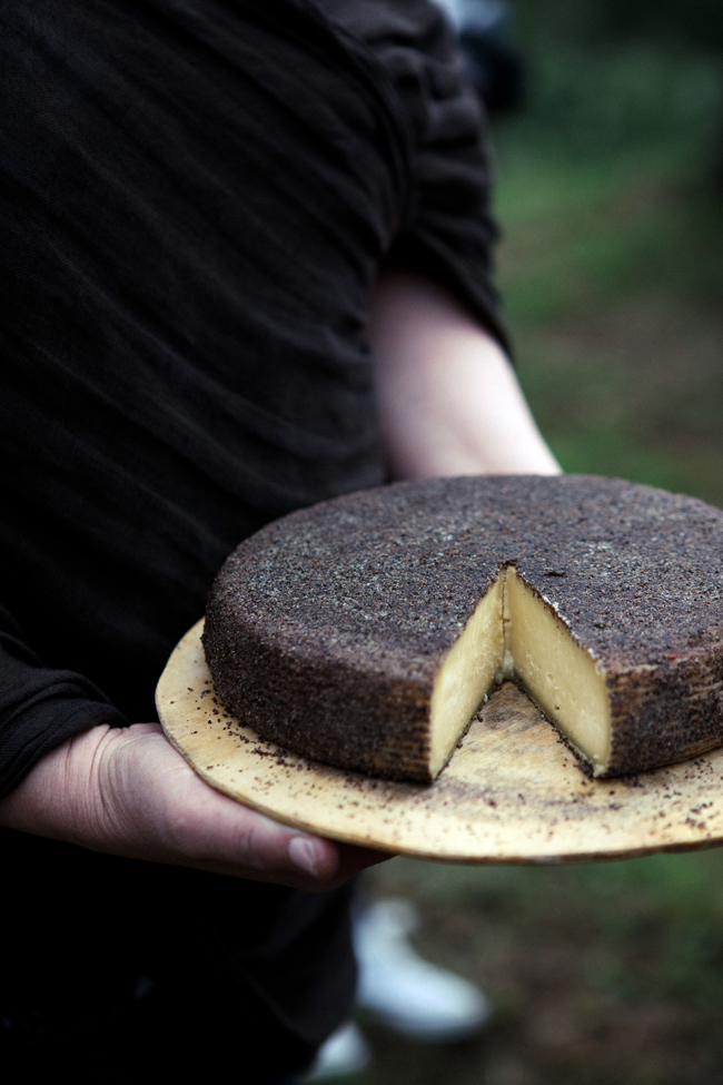 Support this Tuscan cheesemaker's farm | Cannelle et Vanille